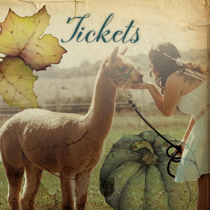 Mitläufer-Ticket November